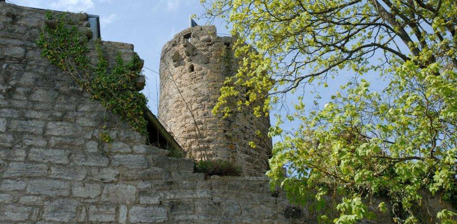 Im Vordergrund ist das Gemäuer der Burg. Man sieht hoch zum Turm. Der Himmel ist blau mit weißen Wolken. In der kompletten rechten Bildhälfte ist ein Baum mit erstem hellgrünen Laub.