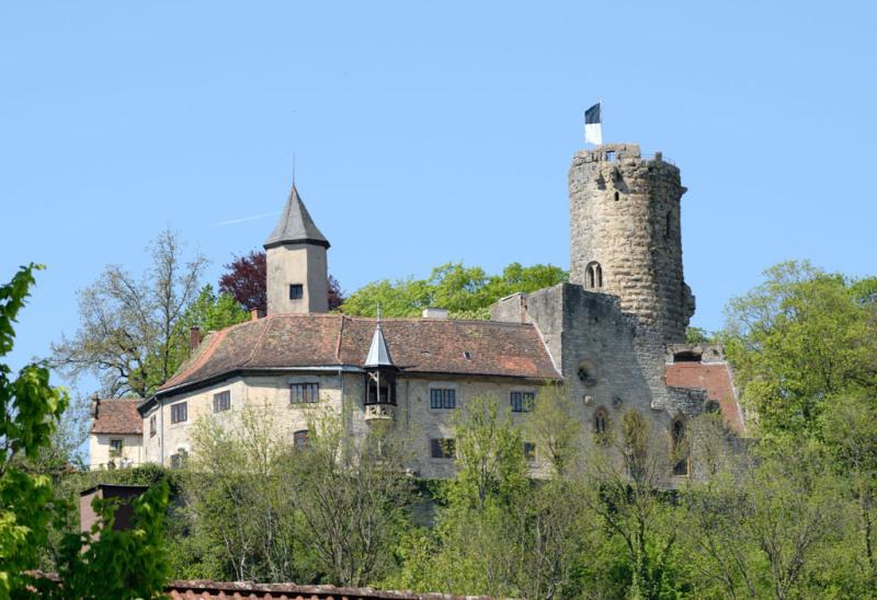 Man sieht die komplette Burg Krautheim in Krautheim im Hohenlohekreis inmitten von hellgrün belaubten Bäumen. Auf dem Turm weht eine Fahne. Der Himmel ist blau und wolkenlos.