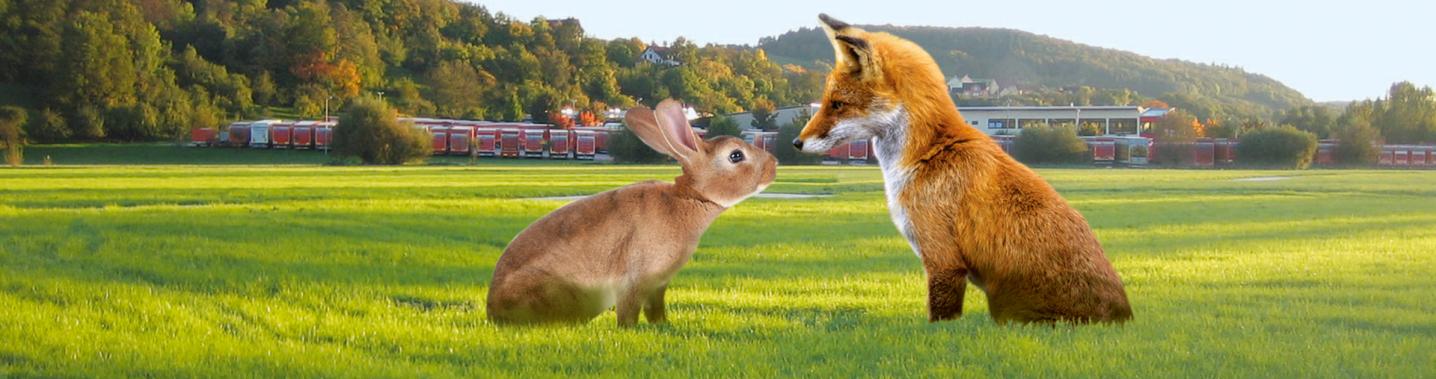 Absolut dominant im Vordergrund mittig sitzen sich Fuchs und Hase gegenüber und schauen sich an. Dahinter ist eine riesige Wiese,. Dahinter erkennt man etwa 50 Lastzüge und das neue Speditions-Gebäude.