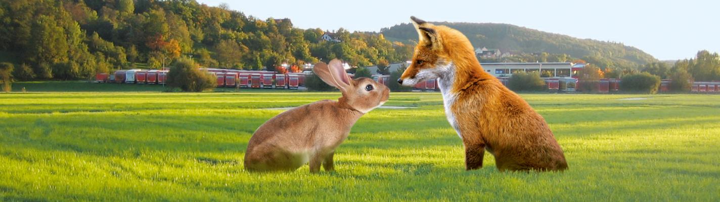 Im Vordergrund sitzen sich riesig ein Hase, links, und ein Fuchs gegenüber und sehen sich an. Hinter den beiden ist ein große Wiese, dahinter sieht man viele Planentieflader von der Rückseite, dahinter ist Wald.