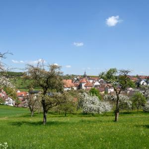 Man sieht den Ort Ballenberg in der Bildmitte, hinter einer sehr großen Wiese mit vielen Bäumen, die zum Teil hübsch blühen. Im blauen Himmel sind wenige weiße Wolken.