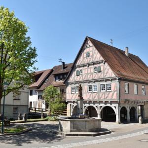 Hinter einem Stadtbrunnen auf einem Platz ist ein sehr hübsches Fachwerkhaus mit Arkaden. Links sieht man einen hellgrünen Baum, der Himmel ist blau.