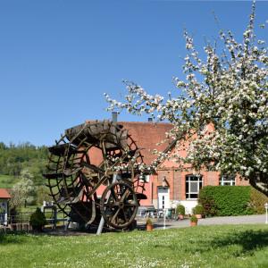 In einer Wiese steht links ein großes Mühlrad, rechts dahinter ist ein Backsteinhaus. Rechts dominiert ein großer weiß blühender Baum.