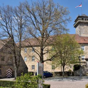 Ein Frühjahrs-Foto zeigt die Gebäude des Schlosses Waldenburg, ein Baum im Hof ist hellgrün belaubt, ein zweiter noch kahl.
