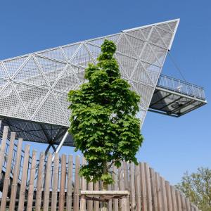 Es ist eine perspektivische Fotografie hinauf zum Aussichtsbauwerk in top moderner Bauweise. Davor steht zentral ein Baum mit Sommerlaub. Dahinter ist ein Zierzaun aus Holz.