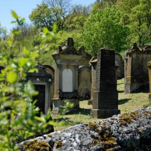 Man sieht auf etwa 5 bis 7 Grabsteine auf einem jüdischen Friedhof. Im Vordergrund unten am Bild sieht man die Mauer, links sind Blätter unscharf und im Hintergrund ist viel grüne Natur.