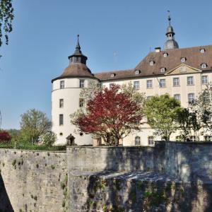 Man sieht den runden Eckturm des Schlosses Langenburg mit dem angeschlossenen Haus links daneben. Dahinter ist die Spitze eines Turms. Davor ist eine Schlossmauer und zwischen ihr und den Gebäuden sind mehrere Bäume.