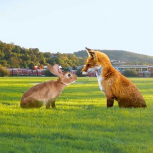 Fuchs und Hase sitzen dominant im Bild auf einer großen Wiese. Dahinter in der Ferne: Jumbo-Lastzüge der Spedition und ein Gebäude.