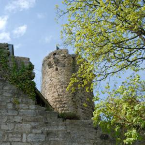 Man hat den Blick hinauf zum Turm der Burg Krautheim, im Vordergrund ist eine Burgmauer, rechts sind Bäume mit frischem Hellgrün.