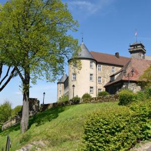 Man blickt von einem sehr tiefen Standpunkt hinauf zum Schloss Waldenburg. Links ist ein Baum mit frischem Frühlings-Laub, vorne eine Hecke, der Himmel ist blau.