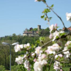 In der Bildmitte sieht man die Burg Krautheim und rundherum Wald. Rechts im Bild im Vordergrund und dominant sind viele Blütenzweige. Der Himmel ist blau.