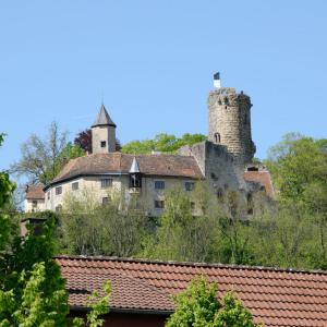 In der Breite ist die Burg Krautheim mit Turm bildfüllend. Unten sieht man ein rotes Dach, oben ist blauer Himmel.